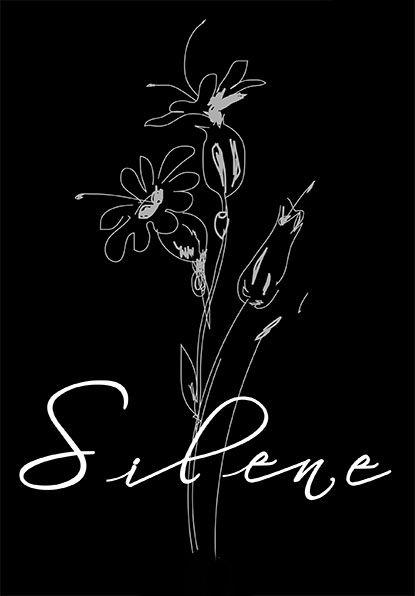 Tejidos Silene